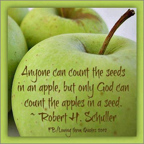 hap mon, apple seeds