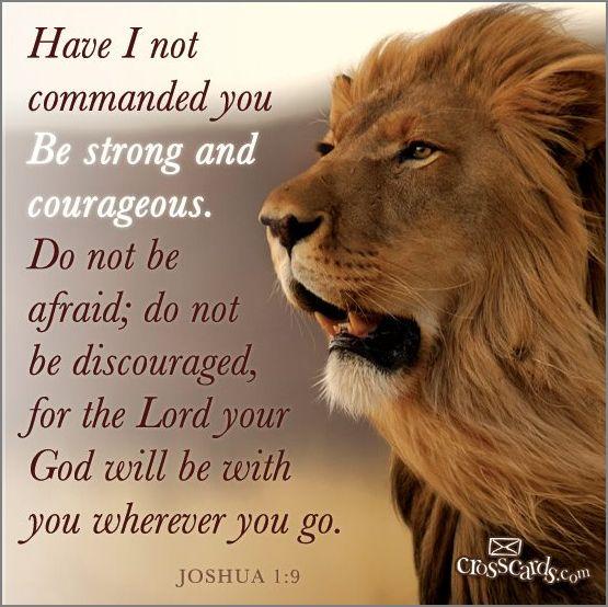 hap mon, courageous