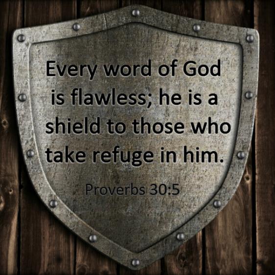 Word shield