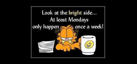 Garfield on Mondays