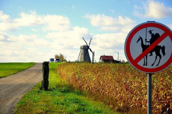 no windmill slaying allowed