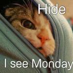 Hide, Monday