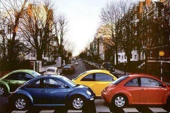 Beetles on Abby Road