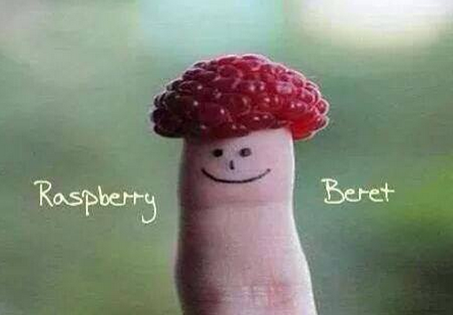 rasberry beret