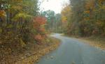 fall colors drive