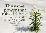 Romans 8 11