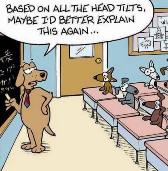 maths best friend