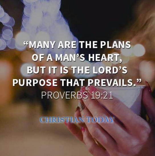 Prov 19 21