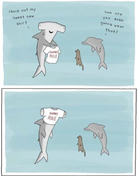 shark t - Edited