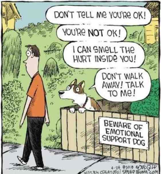 l-19334-beware-of-emotional-support-dog