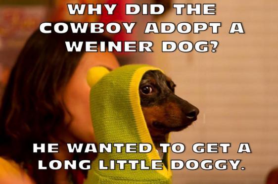 long-little-doggy