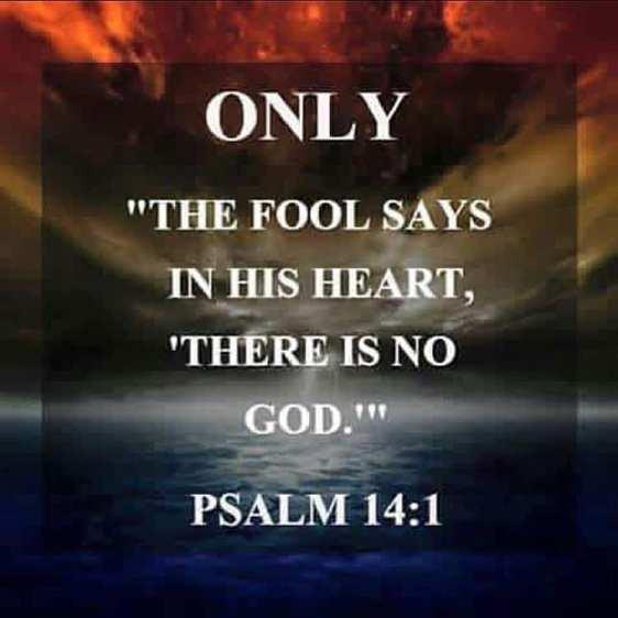 Psalm 14 1
