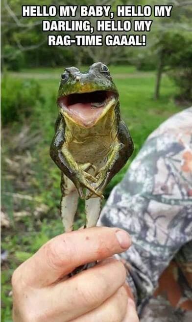 M.J.Frog
